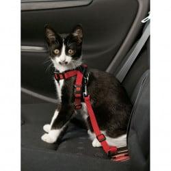 Harnais de sécurité en nylon pour chat, ceinture de sécurité.