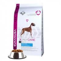 Croquettes pour chien, articulations sensibles Eukanuba Daily Care
