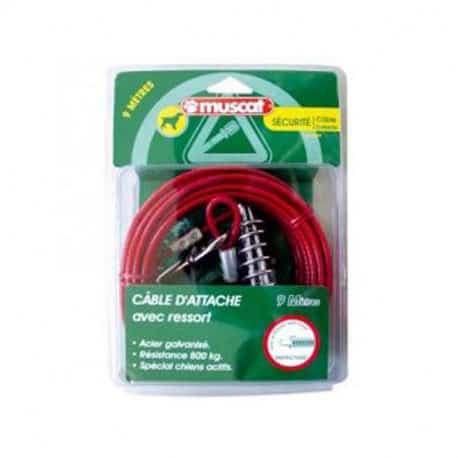 Câble d'attache - Câble chien avec ressort anti-choc