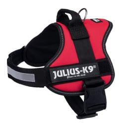 Harnais Julius pour chien K9 Power