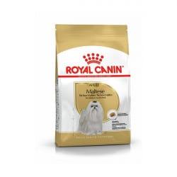 Croquettes pour chien adulte Royal Canin Bichon Maltais