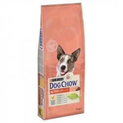 Croquettes pour chien actif Purina Dog Chow