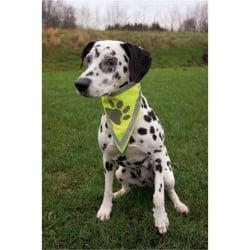 Safer Life Foulard Réfléchissant pour chien