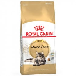 Croquettes pour chat Maine Coon Royal-Canin