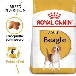 Croquettes pour chien Beagle adulte Royal Canin