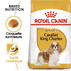Croquettes pour chien Cavalier King Charles adulte Royal Canin