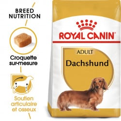 Croquettes pour Teckel adulte Royal canin Dachshund