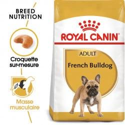 Croquettes pour chien Bouledogue Français adulte Royal Canin