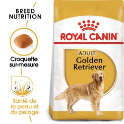 Croquettes pour Golden Retriever adulte Royal canin