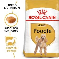Croquettes pour chien Caniche adulte Royal Canin