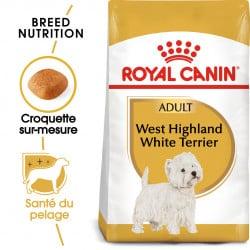 Croquettes pour Westie Royal canin