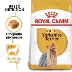 Croquettes pour chien Yorkshire Terrier adulte Royal canin