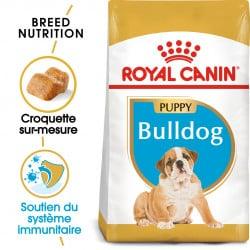 Croquettes pour chiot Bouledogue Anglais Royal Canin