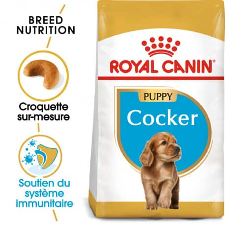 Croquettes pour chien Cocker Junior Royal Canin