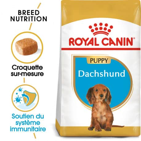 Croquettes pour Teckel chiot Royal canin Dachshund