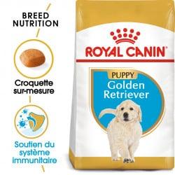 Croquettes pour Golden Retriever junior Royal canin