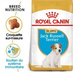 Croquettes pour chien Jack Russel junior Royal Canin