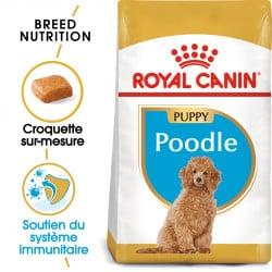 Croquettes pour chiot Caniche Royal Canin 3kg