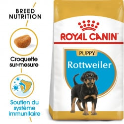 Croquettes chiot Rottweiler Royal Canin