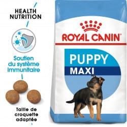 Croquettes pour jeune chien/chiot Royal Canin Maxi Junior