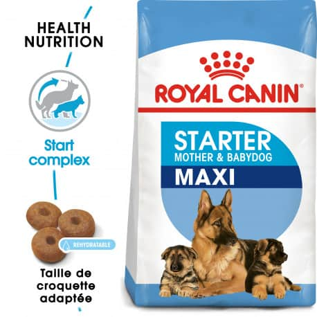 Croquettes pour sevrage chiot Royal Canin Maxi Starter