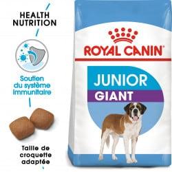 Croquettes pour très grand chien junior Royal Canin Giant