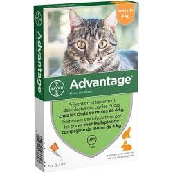 Pipettes Advantage, pour chaton et chat
