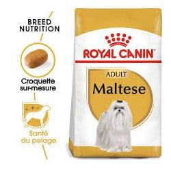 Croquettes pour chien Bichon Maltais adulte Royal Canin 1.5 Kg