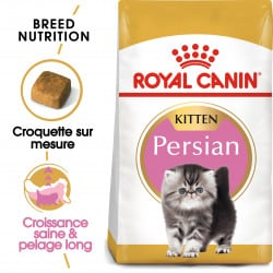 Croquettes pour chaton Persan Royal-Canin Kitten Persian 32
