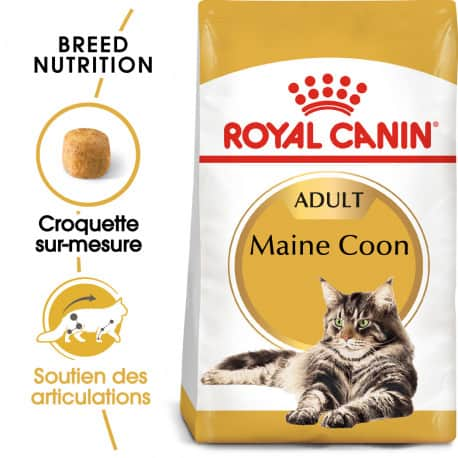 Royal-Canin  Mainecoon 31