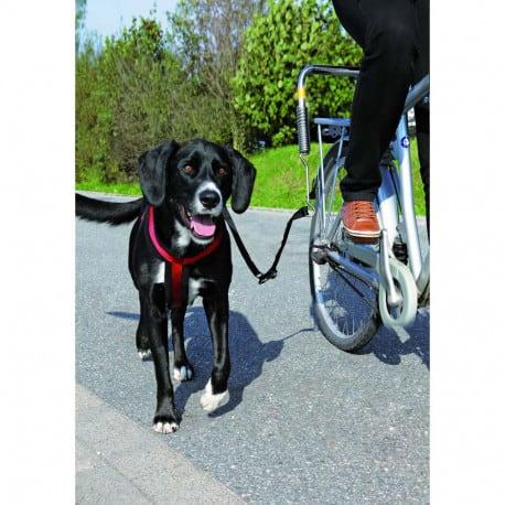 Biker set, Attache vélo pour chien