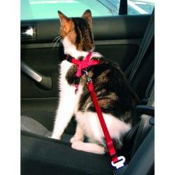 Harnais ceinture de sécurité pour chat