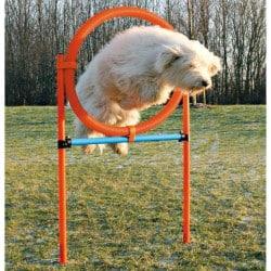 Cerceau agility - Anneau pour chien 65cm