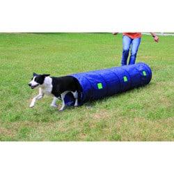 Tunnel d'entraînement à l'Agility pour petit chien/chiot, 2m