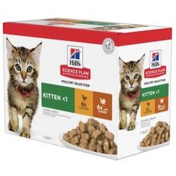 Pâtée pour chaton Hill's Multipack poulet et dinde 12 x 85