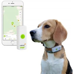 GPS Weenect pour chien
