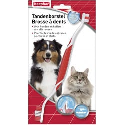 Brosse à dents pour chat et chien