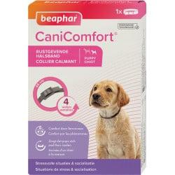 Collier canicomfort calmant aux phéromones pour chien