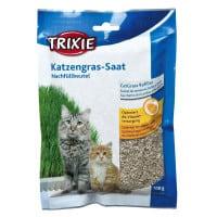 Sachet de semences d'herbe à chat (graines d'herbe)