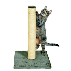 Arbre à chat Parla, poteau griffoir - Gris