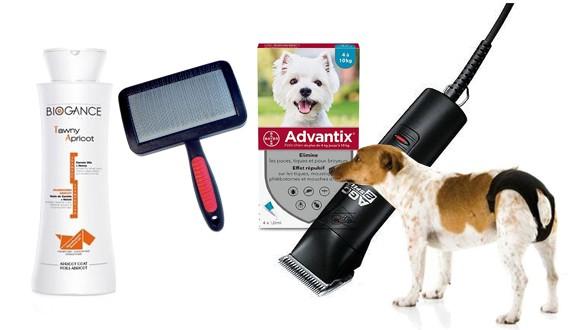 Produits hygiène pour chien
