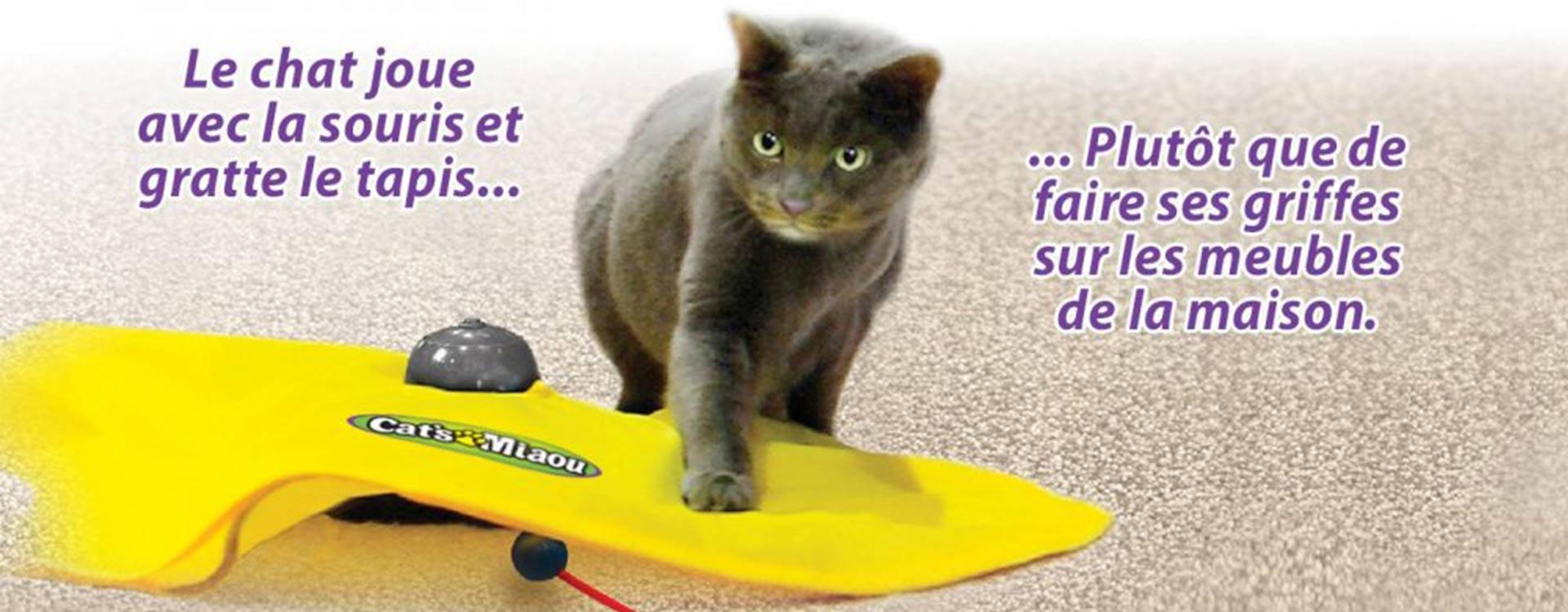 Cat's Miaou, tapis animé pour chat