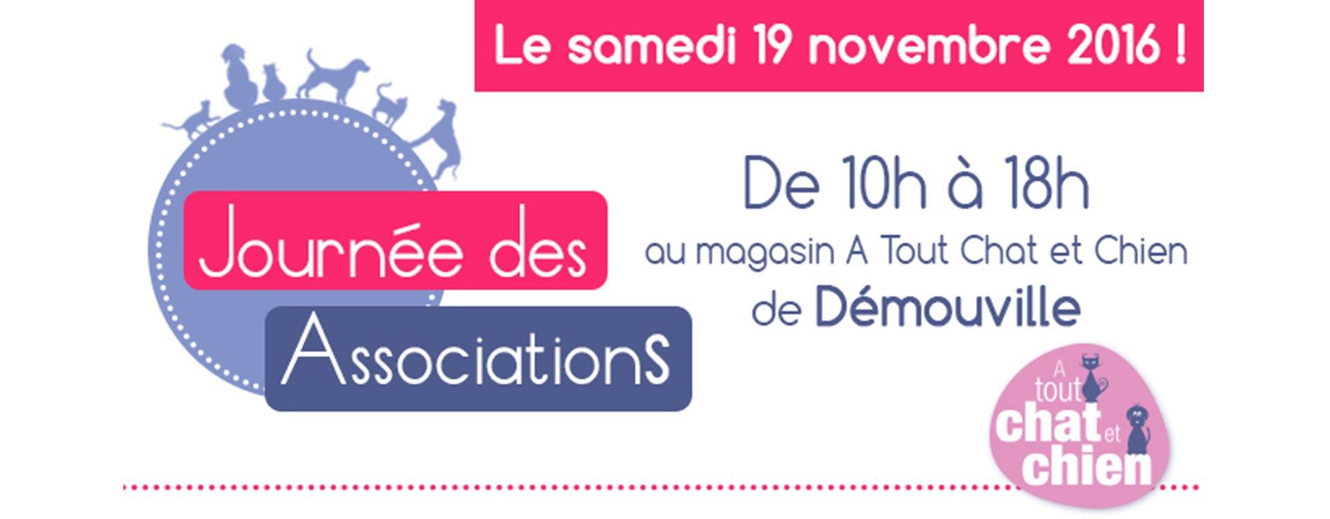 Journée des associations 2016