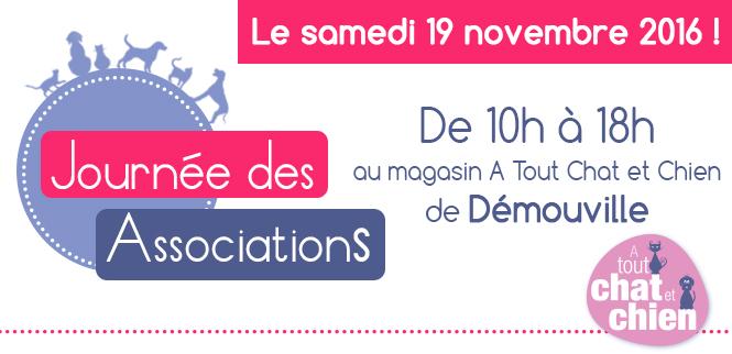 journee-des-association-2016-web
