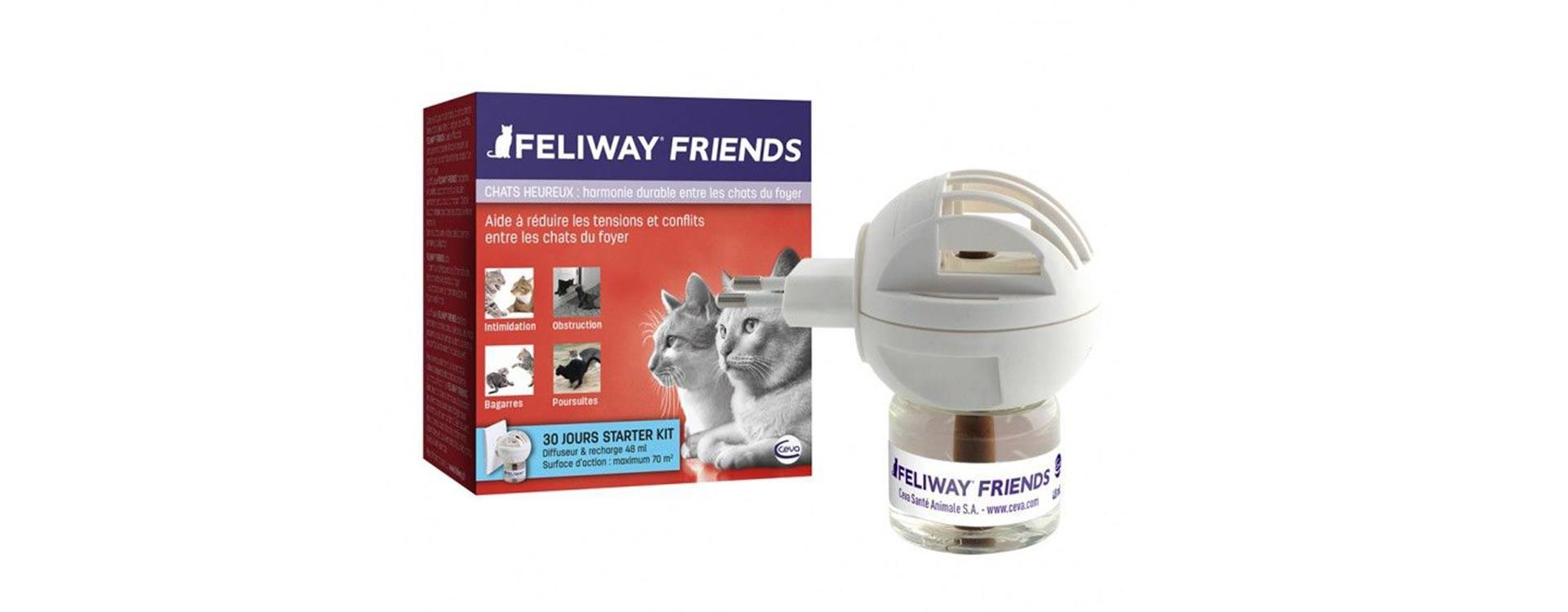 Feliway friend, pour une meilleure cohabitation entre vos félins !